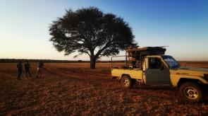Makgoro hunting vehicle